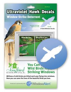 Stop birds from hitting your windows. Hawk Decal Envelope - 2 decal pack - WindowAlert: