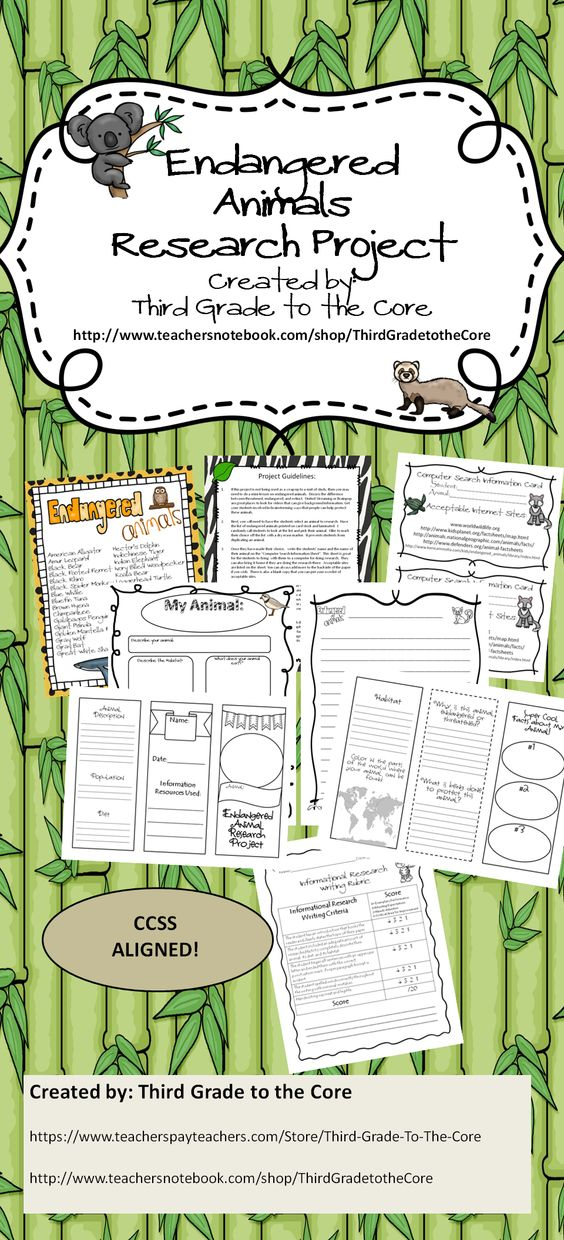 Research paper on endangered animals