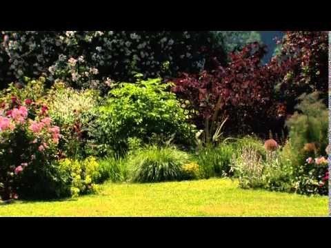 Mit Pflanzen Malen Wie Claude Monet 22 Juni 2014 Youtube Pflanzen Malen Monet Claude Monet Pflanzen