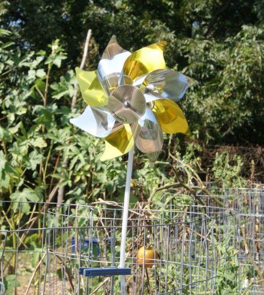 How To Keep Birds Out Of Your Vegetable Garden Gardens Pinwheels And Vegetable Garden