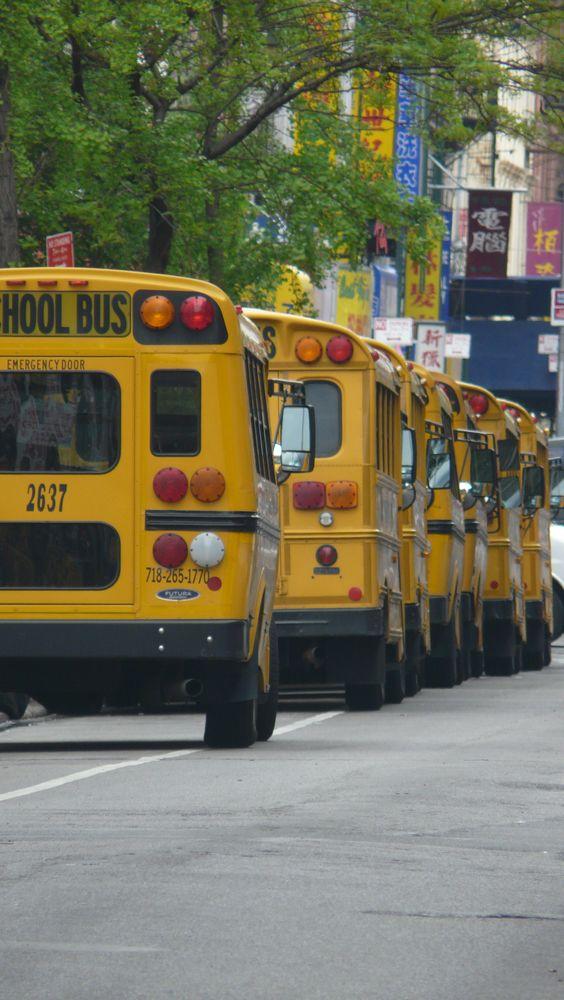 Busbusbusbusbusbus......
