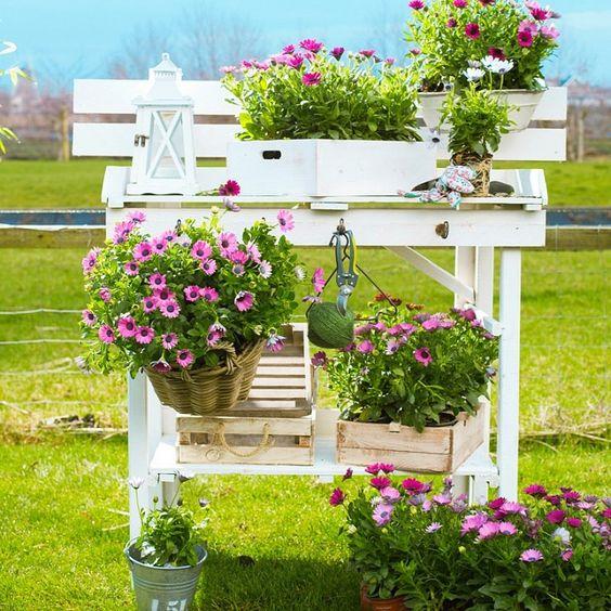 Een oppottafel vol bloemenpracht  #Intratuin #Voorjaar #Bloemen #Planten #Tuin #Tuinieren #