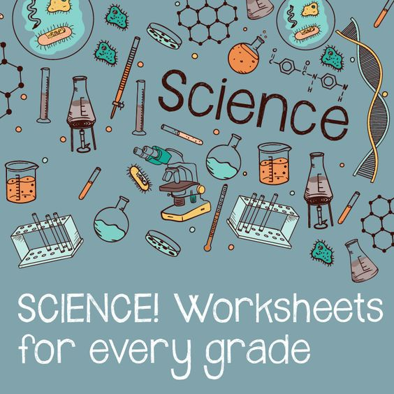Free fun science worksheets for 3rd grade