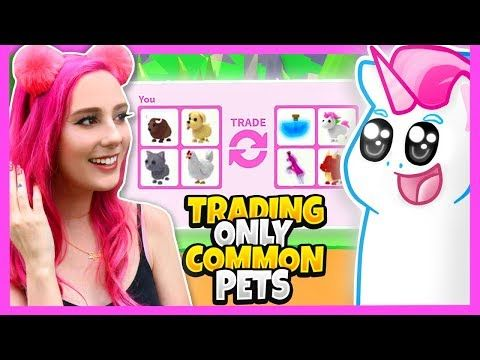 Meganplays Challenged Me To A Adopt Me Trading Battle Only Trading Common Pets Adopt Me Challenge Youtube Adoption Challenges Roblox Pictures
