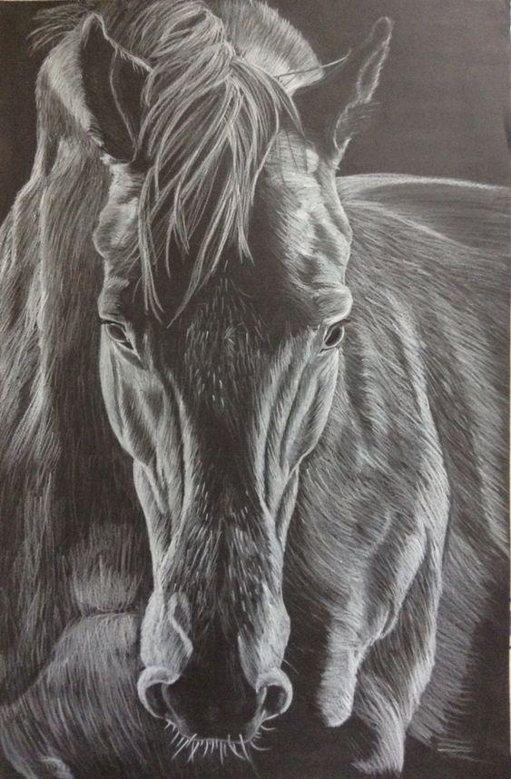 Dessin cheval crayon blanc sur fond noir dessin en blanc - Dessin fond noir ...