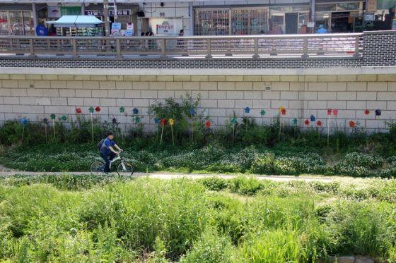 Con đường dành cho xe đạp Okcheon Hyangsu Baengi