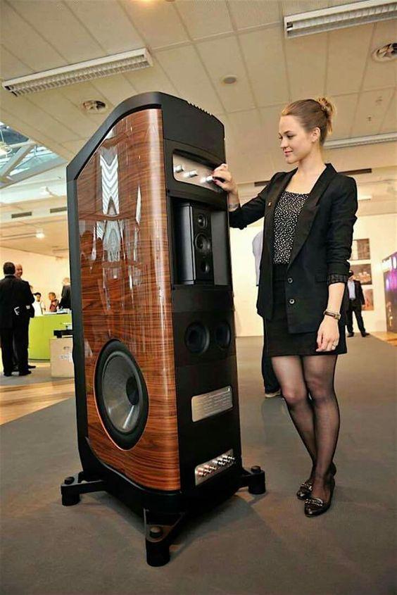 The Sonus faber flagship speaker...