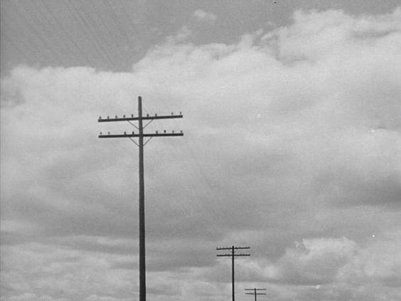 Chicago Calling (1951)