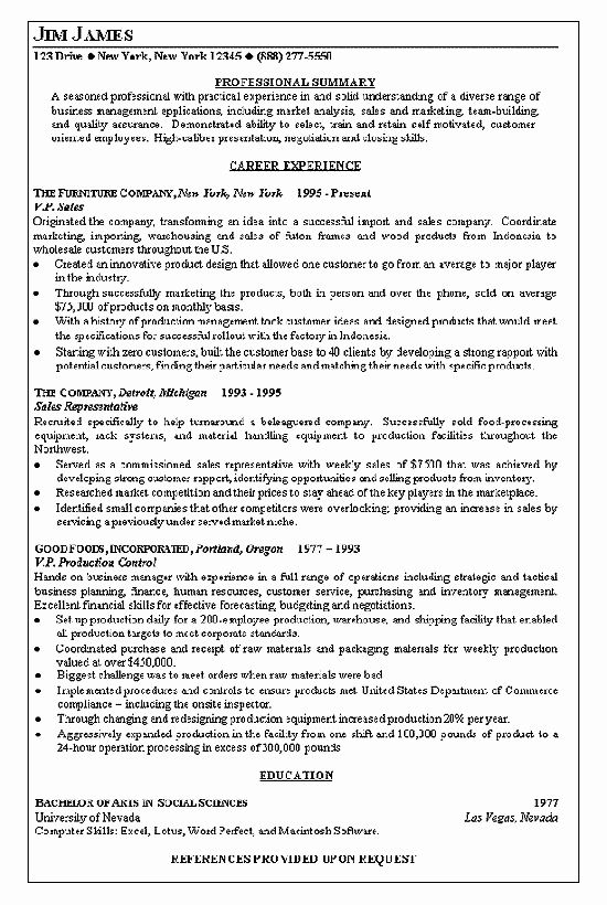 New Vice President Of Sales Resume Example Medical Sales Resume Marketing Resume Sales Resume Examples