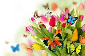 Primavera que se acerca