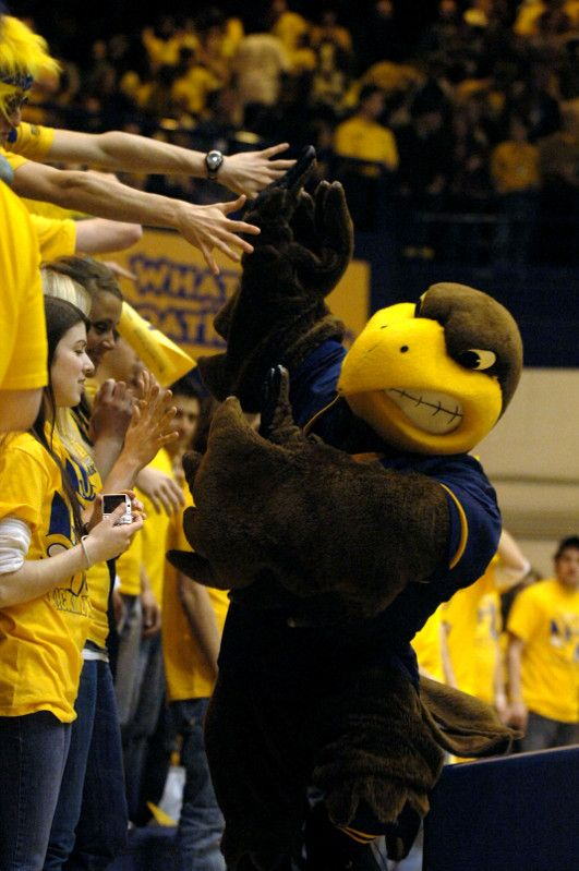 Kent State basketball fans cheer on Flash, the mascot of the Golden Flashes during a Spring, 2007 game against the rival Akron Zips. Photo taken by Bob Christy March 4, 2007.