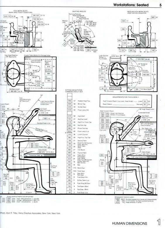 ergonomic measurements of different positions of people