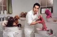 Paul Rudd gone to the dogs.
