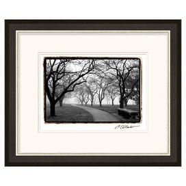 """Framed giclee print of a black and white landscape.  Product: Framed printConstruction Material: Wood and paperColor: Black frameFeatures:  Original artwork by Laura DeNardoMade in the USAReady to hang Dimensions: 22"""" H x 26"""" W"""