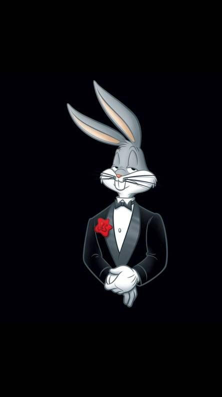 Mr Bugs Bunny Bunny Wallpaper Looney Tunes Wallpaper Cartoon Wallpaper Bugs bunny cartoon hd wallpaper