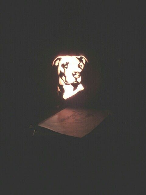 I made this pumkin last Halloween it looks exactly like my dog