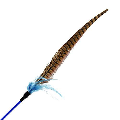 Best Cat Toys Petfly Cat Toys Feather Wand Teaser Toy Natural Pheasants Tail Turkey Feathers With Bell Feather Toys Cat Toys Homemade Cat Toys Diy Cat Toys