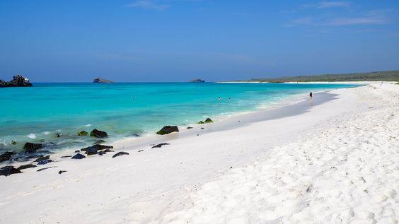 Resultado de imagen para Bahía Gardner Isla española, Ecuador