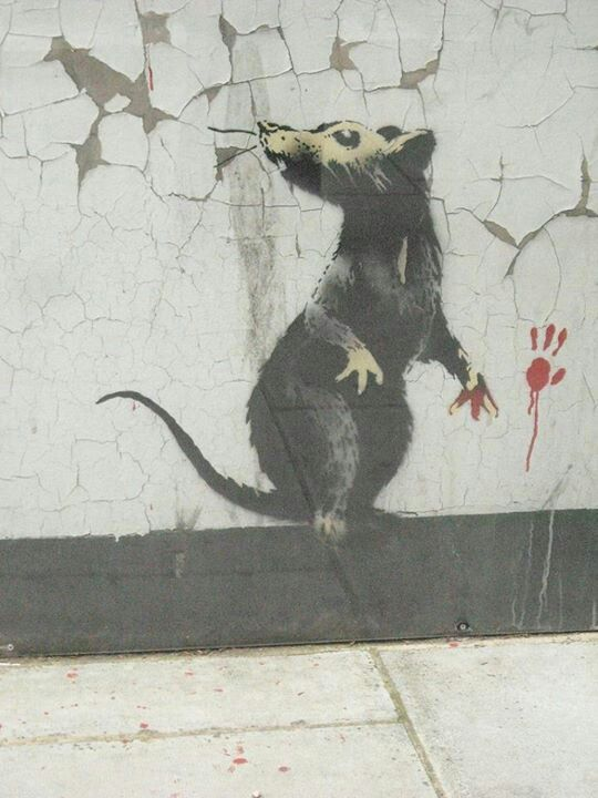 """""""They exist without permission. They are hated, hunted and persecuted. They live in quiet desperation amongst the filth. And yet they are capable of bringing entire civilizations to their knees. If you are dirty, insignificant, and unloved then rats are the ultimate role model.""""  - Banksy, Wall and Piece"""