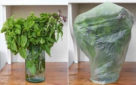 Cómo mantener frescos durante mucho más tiempo los alimentos. Un contenido utilísimo e interesante. ¡No os lo perdáis!