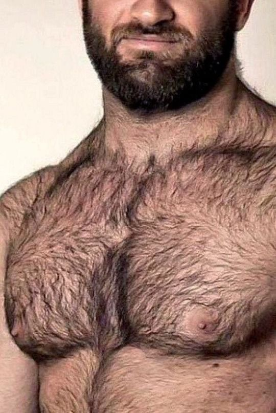 Scruffy Men Image By Steve Koepke On Hairy Hairy Chested Men