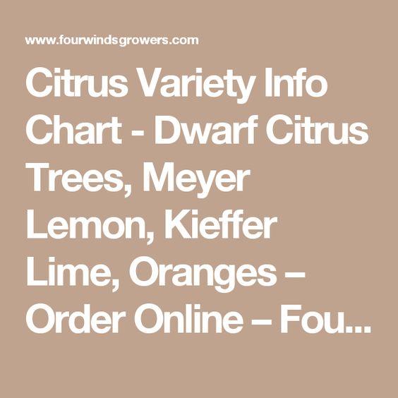 Citrus Variety Info Chart - Dwarf Citrus Trees, Meyer Lemon, Kieffer Lime, Oranges – Order Online – Four Winds Growers
