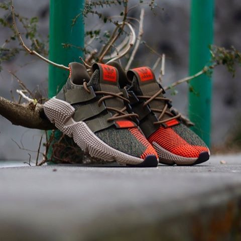 Adidas Prophere Olive solar red CQ2127 | Chaussure mode