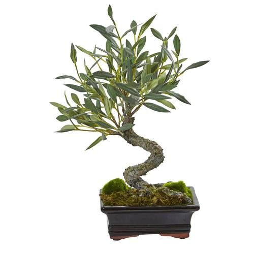 Mini Olive Artificial Bonsai Tree Indoor Bonsai Tree Bonsai Tree Types Bonsai Tree