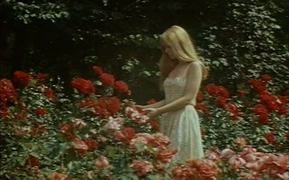 "roserosette: ""The Demise of Father Mouret, 1970, Georges Franju """