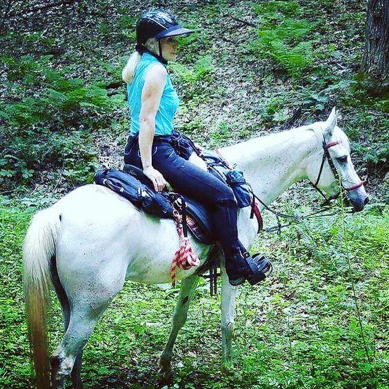 My little Arabian....Shasha