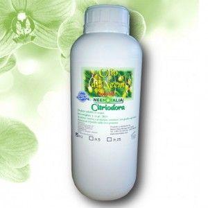 olio di neem citriodora 1lt