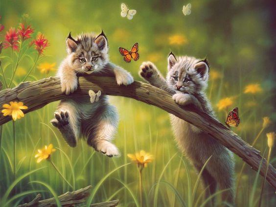 Jugando con mariposas