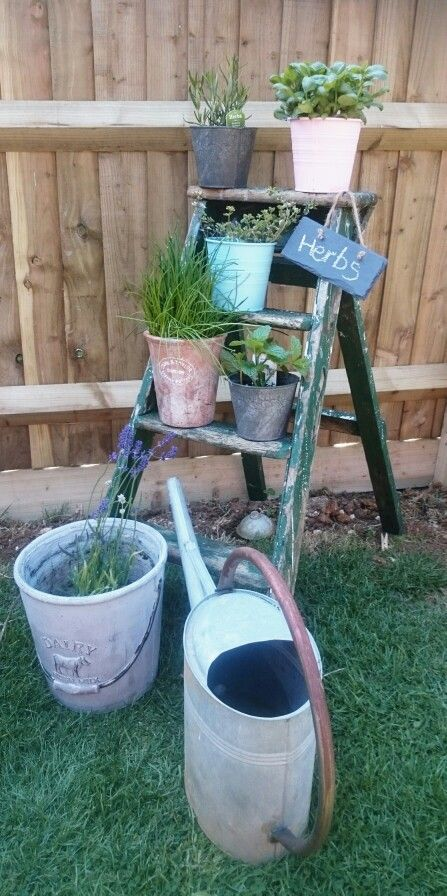 "Newly created ""stepladder herb garden"""