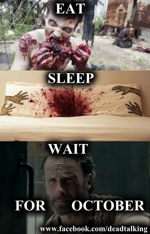 OMG who else saw the trailer for season 6? Wow I think this is gonna b the craziest season. I'm really scared to see what's gonna happen. Bring it on walkers