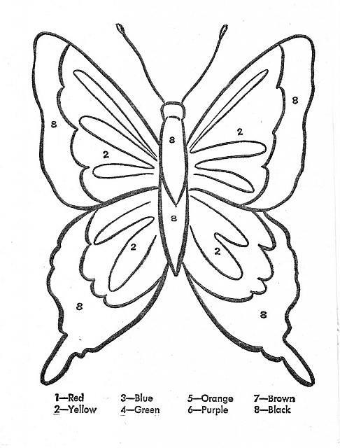 Butterfly Modello Di Farfalla Disegno Di Animali Disegni