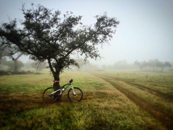 Mañanita de #niebla y #MTB