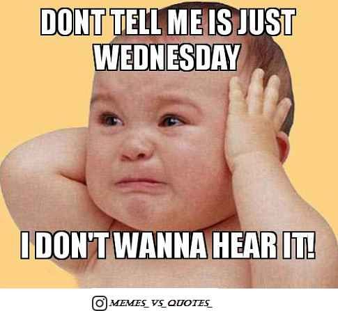 Wednesday Meme Wednesday Memes Great Day Quotes Funny Wednesday Memes