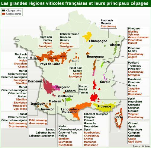Carte Des Cepages De France Francetravels France Wine Wine Map