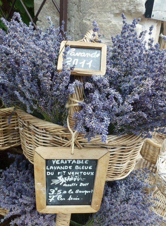 Baskets of Lavender