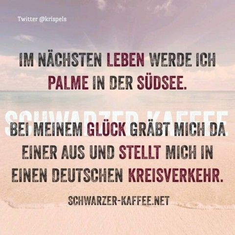 Rauchmelder? Sprüche Pinterest Humor, Funny quotes and Nice