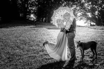 @petertogelphoto: https://elitebridalevents.wordpress.com/2015/09/04/exhibitor-highlight-peter-togel-photography-llc-2/