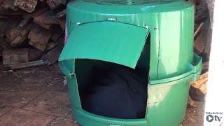 """""""O Grito do Bicho"""": Grupo Amigo Bicho confecciona casinhas para animai..."""