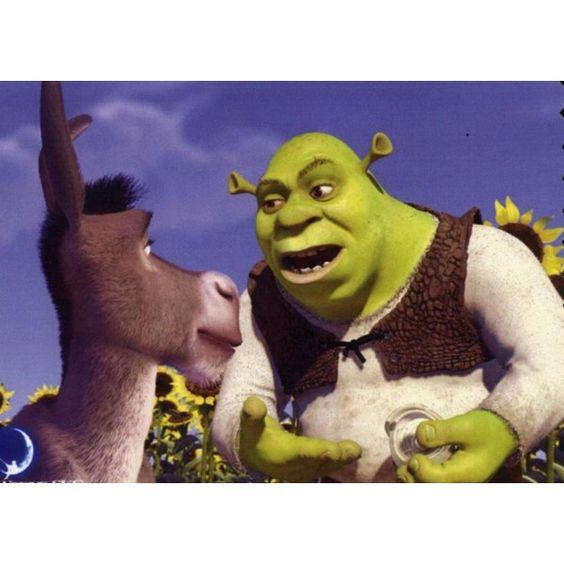 Shrek, Shrek Donkey And Donkeys On Pinterest-5842
