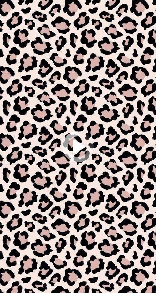 P I N T E R E S T Kaylinblocher Animal Print Wallpaper Backgrounds Phone Wallpapers Pretty Wallpaper Iphone