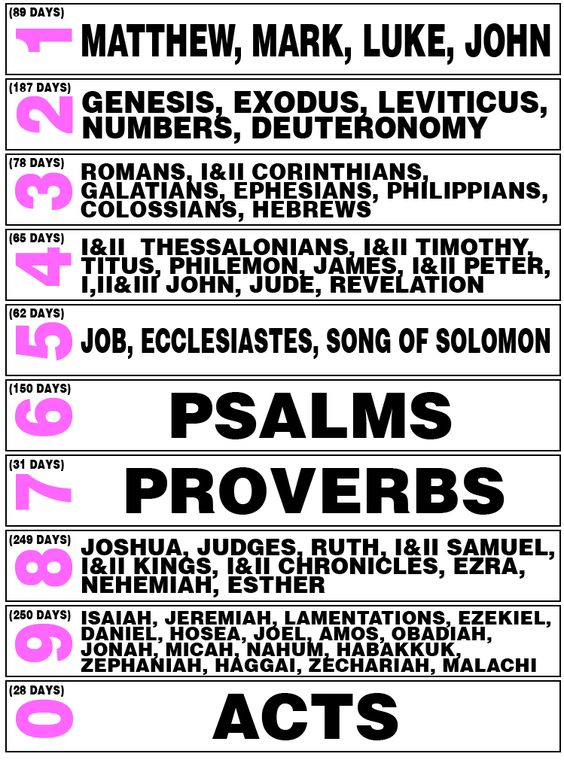 I think this is going to be my Bible reading plan for 2014!