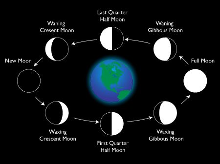 Pictures Of Moon Phases For Kids Moon 39 S Phases Visit