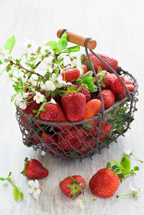 Strawberries  |  whimsicalraindropcottage.tumblr.com