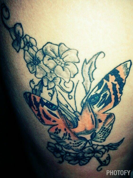 tigerbutterfly