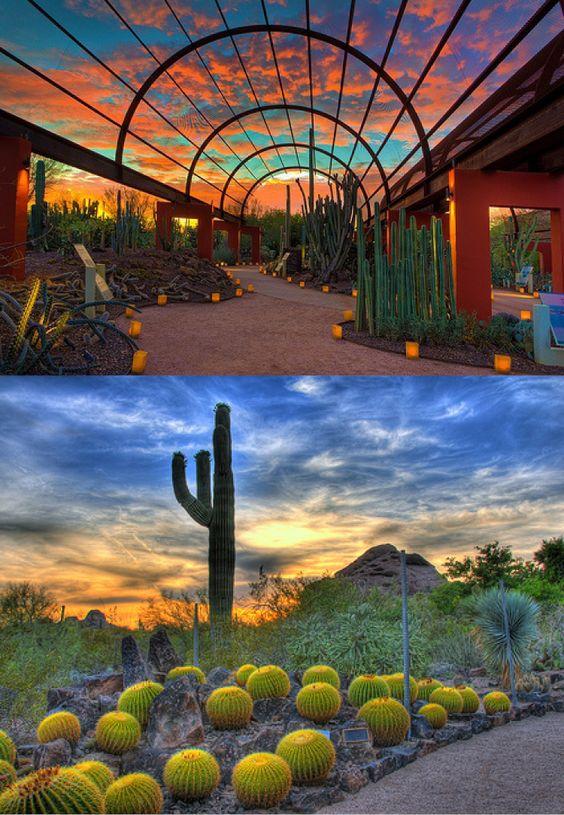 Gardens Architecture And Arizona On Pinterest