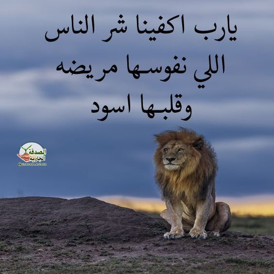 Pin By S On صور Poster Romantic Quotes Arabic Quotes